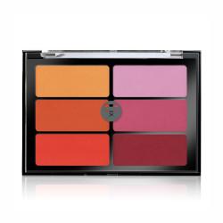 Orange Violet Blush Palette