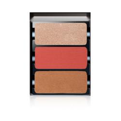 Theory Ii Ablaze Face Palette - Vpc02